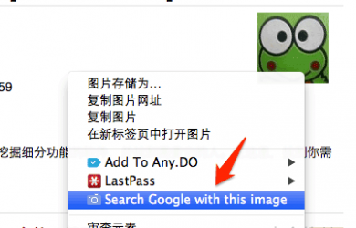 Search by Image - 快速以图找图[Chrome] 41