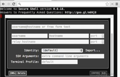 Secure Shell - Chrome 里的独立 SSH 客户端 34