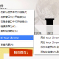 IE your Chrome - 高效的 IETab 扩展[Chrome] 6