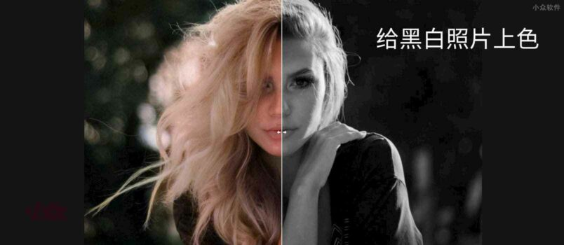 Image Colorizer - 用 AI 给黑白照片上色 1
