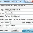 FLAC Comment Editor - 修改 FLAC 文件标签 4