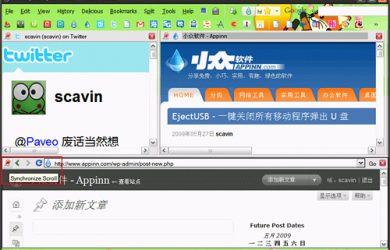 Split Browser - Firefox 分屏浏览扩展 30